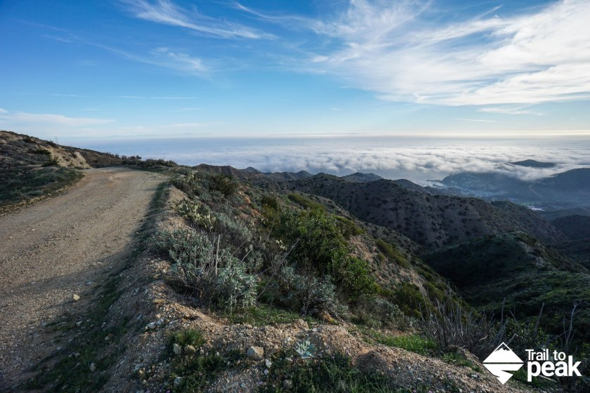 20 Photos That Will Make You Want Hike Around Catalina Island