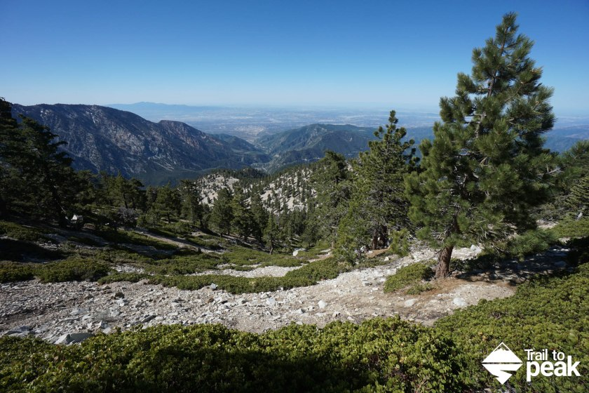 Hiking Mt Baldy via Bear Canyon Old Mt. Baldy Trail