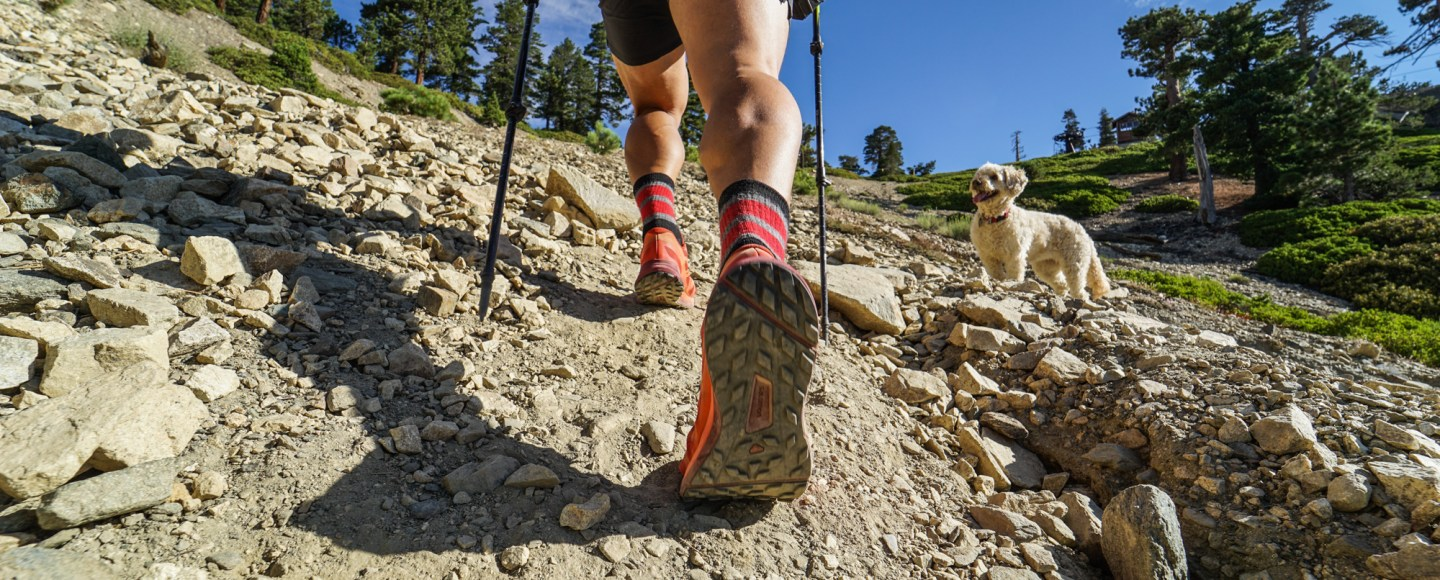 Gear Review: Salomon Sense Ride