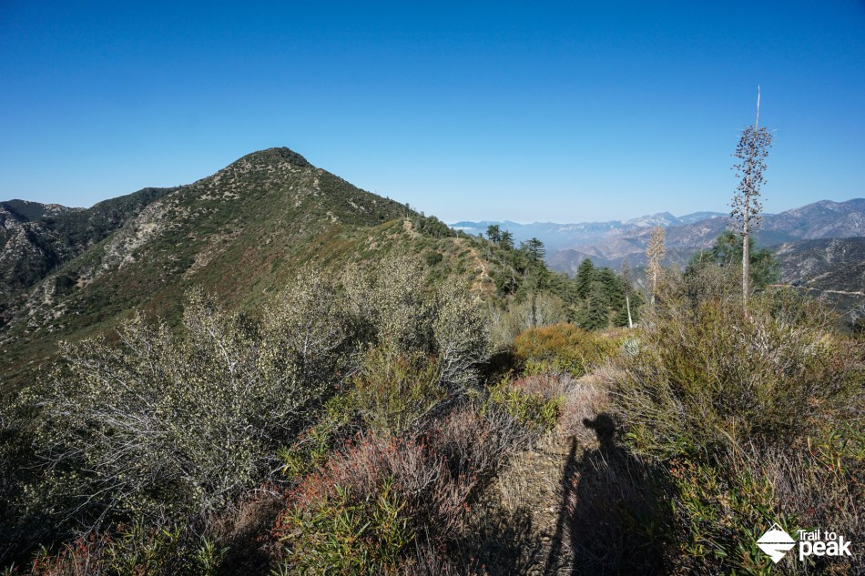 Hiking Sunset Peak Via The East Ridge Trail