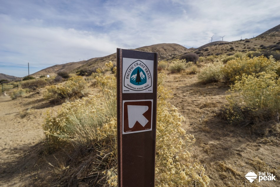 Hiking To Cameron Ridge On The Pacific Crest Trail