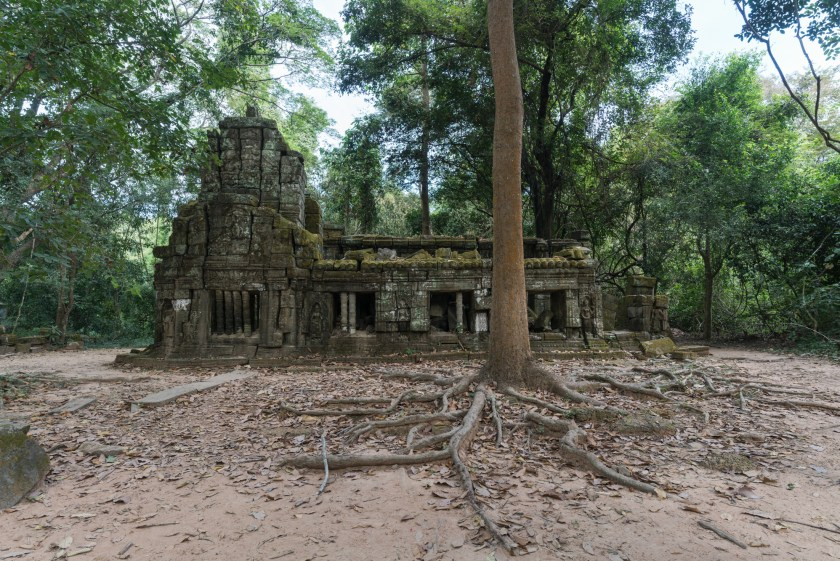 5 Reasons to Visit Siem Reap Cambodia Ta Prohm