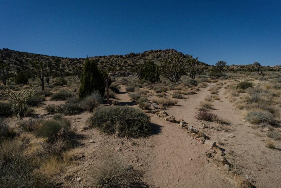 Hiking Teutonia Peak In Mojave National Preserve