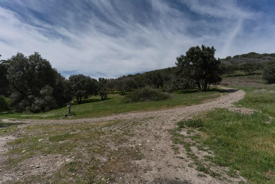 Hiking To Smuggler's Cove Loop – Santa Cruz Island