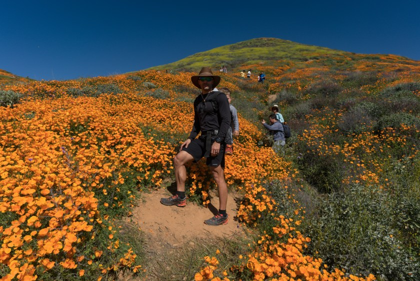 A Look At The Amazing Poppy Super Bloom In Lake Elsinore, CA