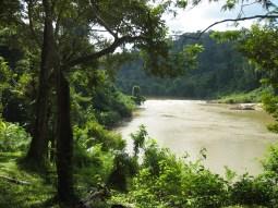 The Tembling River near Nusa Camp.