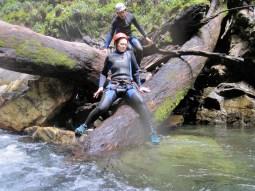 Deadfall log jams present fun challenges.