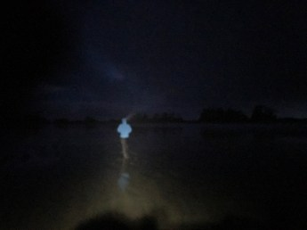 Bill, far ahead, disappearing into the darkness.
