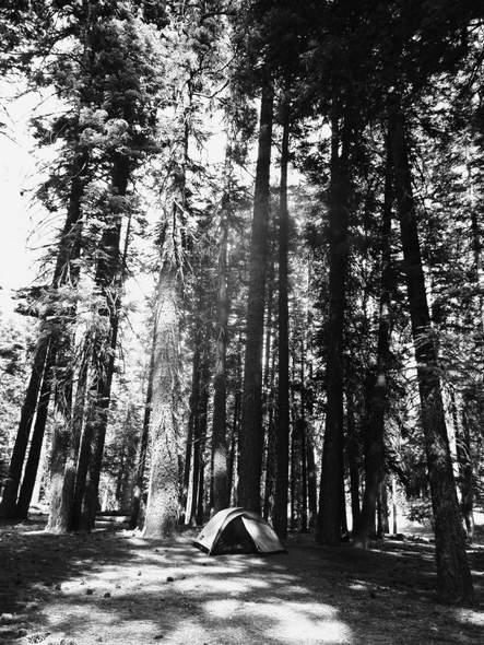 lassen campground