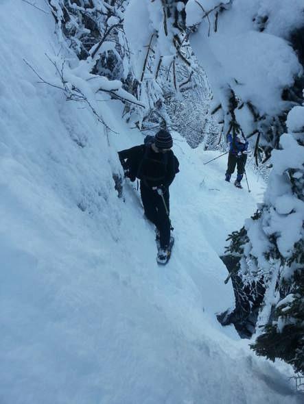 wildcat ridge trail