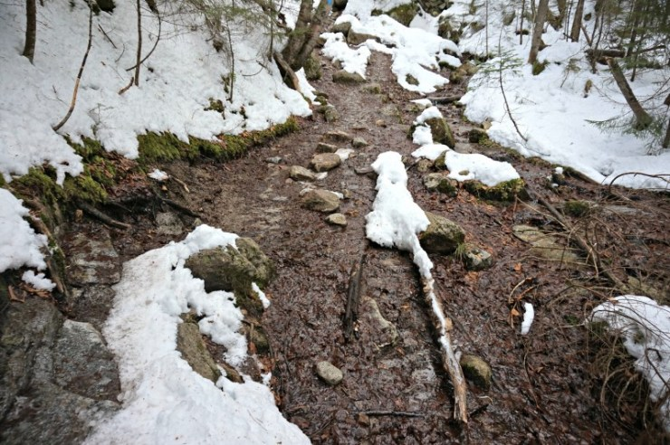 8-falling waters trail
