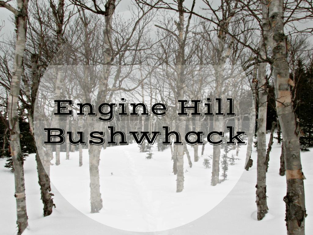 engine hill bushwhack