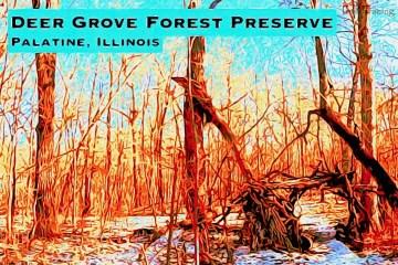 Deer Grove Thumbnail