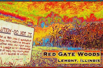 Red Gate Woods