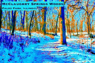 McClaughry Springs Woods Thumbnail