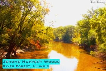 Huppert Woods Thumbnail
