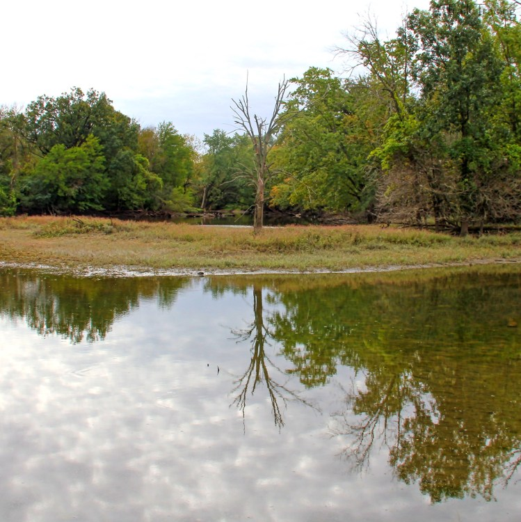 Cahokia Reflection1
