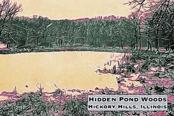 Hidden Pond Blog Thumbnail
