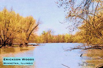 Erickson Woods Thumbnail