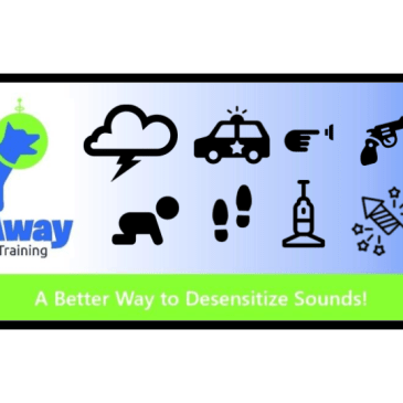 Thundershirt & TrainAway Reduce Noise Phobia