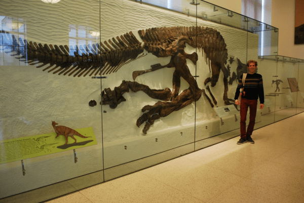 American Museum Of Natural History Trainee Biological