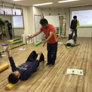 体幹,ストレッチポール,インナーユニット,姿勢改善