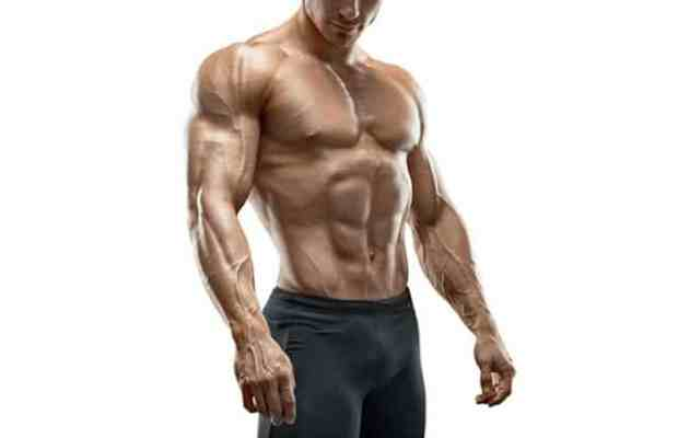 Fat Loss Extreme Review