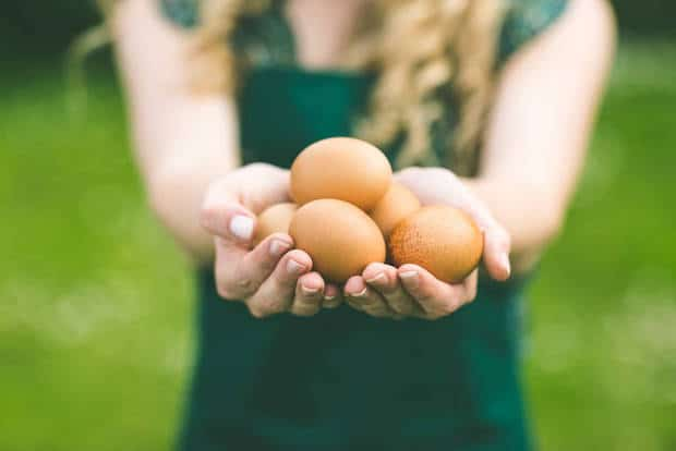 are eggs healthy for weight loss