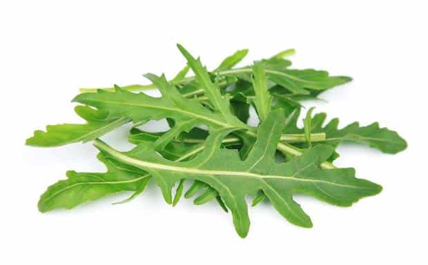 arugula superfood