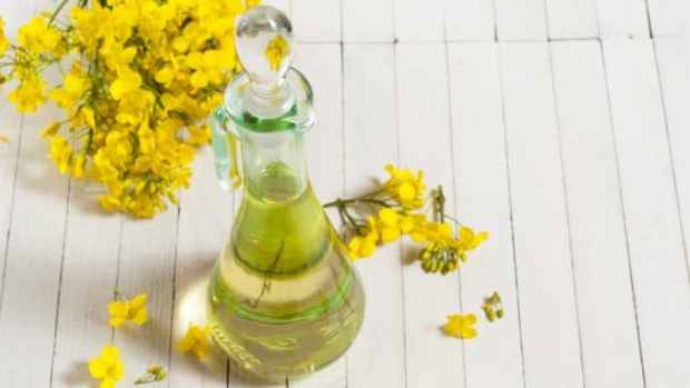 why canola oil is good for you