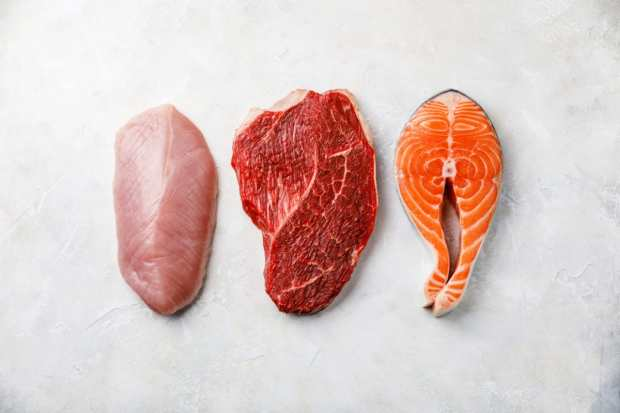 protein visceral fat