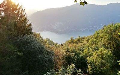 Trieste to Constanta