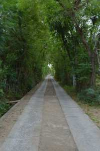The road to my guesthouse