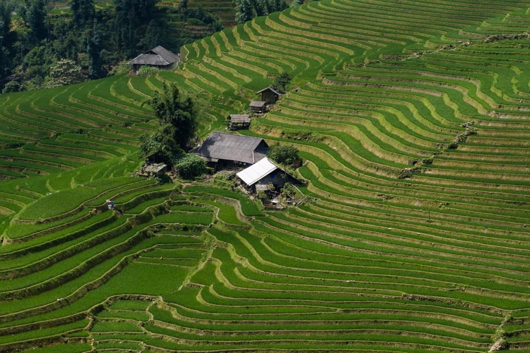 anecdote vietnam paysage sapa nord