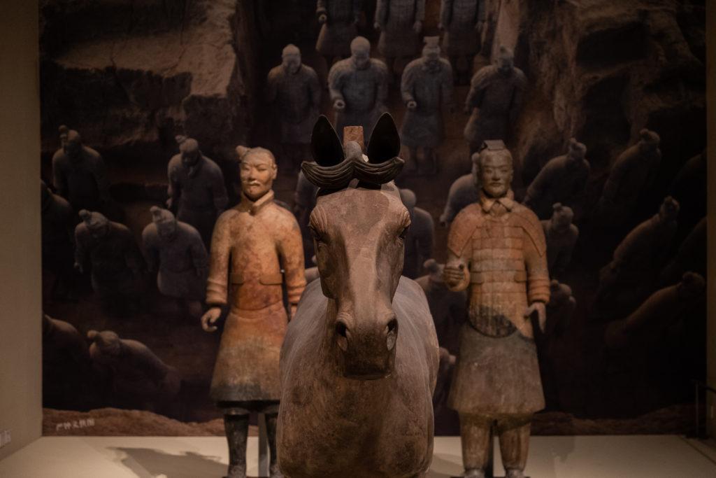 terra cota warrior musée pékin beijing soldat terre cuite