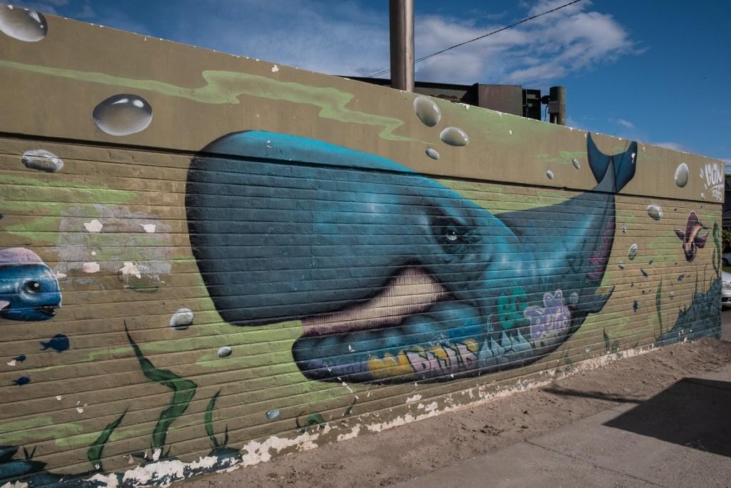 grafitti tag puerto madryn baleine patagonie argentine