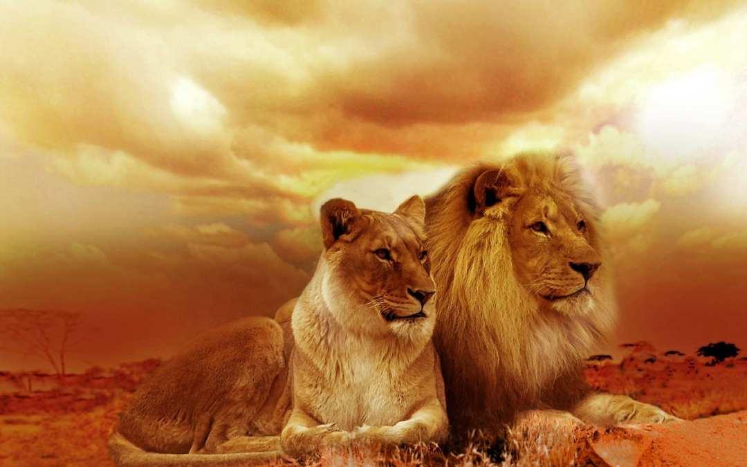 África – 11 Paraísos de Ensueño
