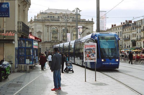 tam_tram_comedie_2.jpg