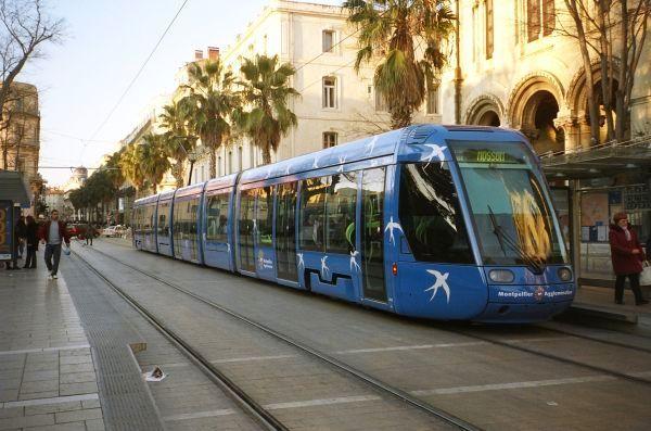 tam_tram_gare_1.jpg