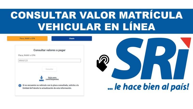 Consultar Valor Matrícula Vehicular en el SRI