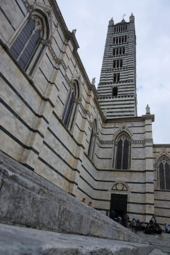 Siena Cathedral3