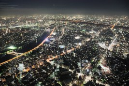 Tokyo from Above dusk 12