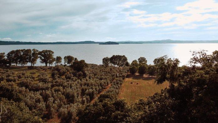 lago di bolsena cosa fare  lago di bolsena cose da vedere  lago di bolsena cosa visitare  cosa vedere lago di bolsena   Lago di Bolsena cosa vedere