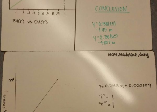 Bouncy ball lab whiteboard samples