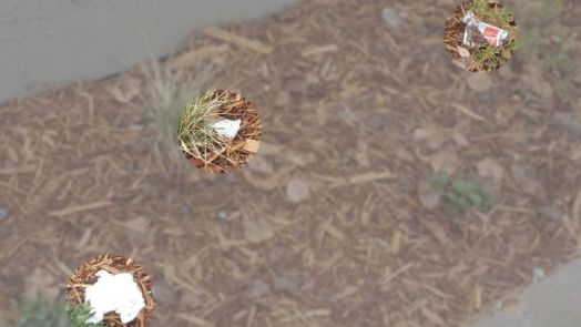 photo of trash in garden