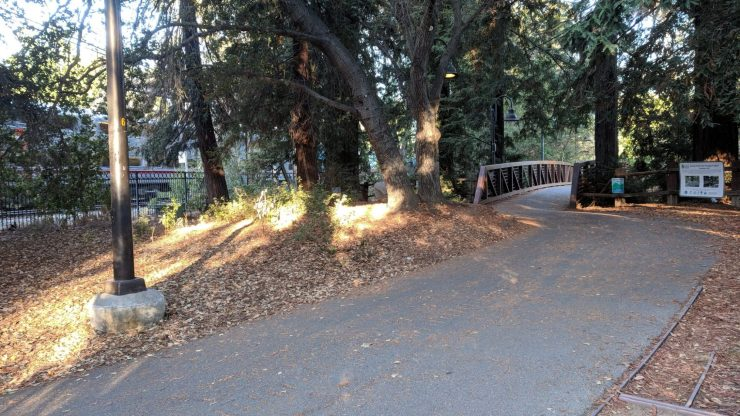 Photo of Caltrain passing the trail