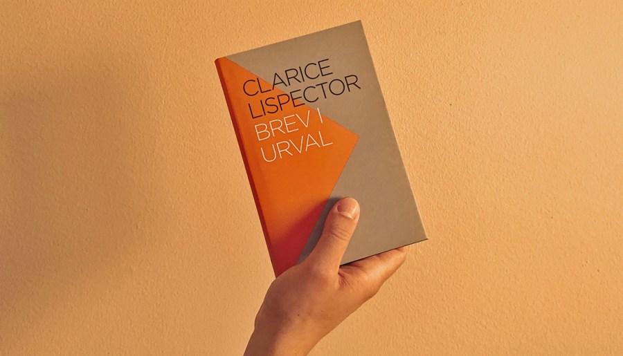 »Brev är spöklika saker.« – läs Hanna Nordenhöks efterord till Clarice Lispectors Brev i urval
