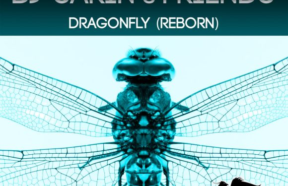 DJ Sakin & Friends – Dragonfly (Reborn)