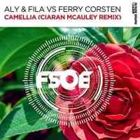 Aly & Fila vs. Ferry Corsten - Camellia (Ciaran McAuley Remix)
