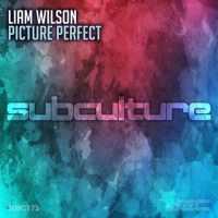 Liam Wilson - Picture Perfect